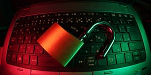 Cybersecurity risk management can protect organizations from the worst effects of a ransomware attack